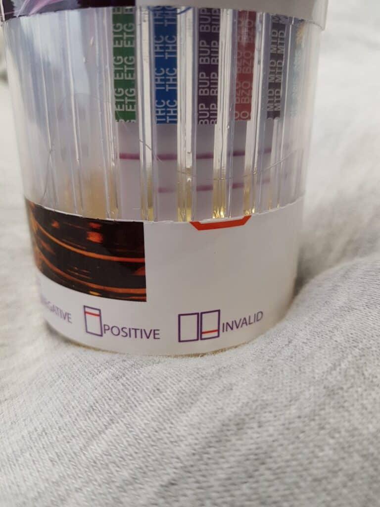 multi-panel drug test